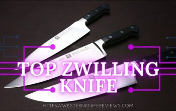 5 Best Zwilling Knives Review 2021 [Updated List of Top Zwilling Knife]