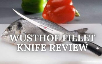 🔪 Wusthof Fillet Knife Review [Literally shocked😲, After using!!]