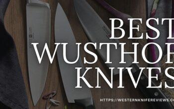 7 Best Wusthof Knives Review 2021 [Legendary😎Knives]