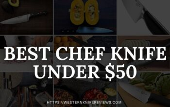 10 Best Chef Knife Under $50 2021 [Unbelievable Value of Money]