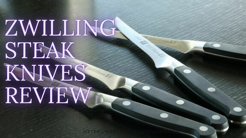 Zwilling Steak Knives Review