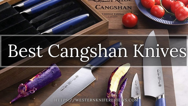Best Cangshan Knives Reviews
