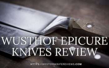 ▷ Wusthof Epicure Knives Review[Most Aesthetic Wusthof Knife?]