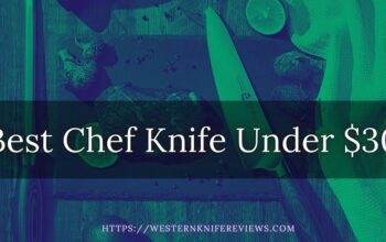 8 Best Chef Knife Under $30 | Budget Knife | Practical Choice 2021