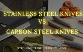▷ Stainless Steel Knives vs Carbon Steel Knives | In Brief Only