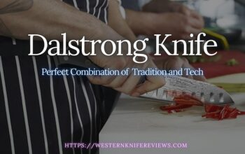 5 Best Dalstrong Knife Review [Modern Tech Heavy Knives]