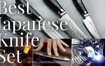 10 Best Japanese Knife Block Set 2022 [High-End to Low Budget]