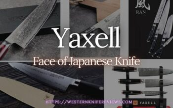 ▷ Yaxell Knife Review [🧐Checking Japanese Quality]