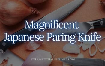 10 Best Japanese Paring Knife | 💕Magnificent Cutting Experience