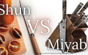 ▷ Miyabi Vs Shun Knives | Who Makes Best Japanese Knife?