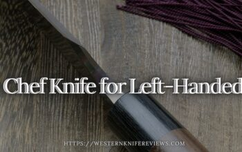 5 Best Chef Knife for Left-Handed 2021| Left-hand Was Never an Issue