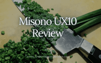 Misono UX10 Review | Sustainable Japanese Knife Or Not?