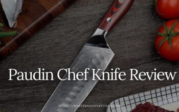 ▷ Paudin Chef Knife Review[ We Select Top 3 Paudin Knife]